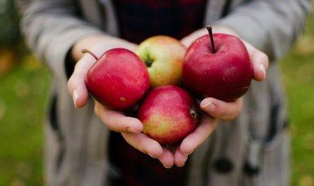 Obvestilo o obratovanju mobilne stiskalnice jabolk v letošnji jeseni