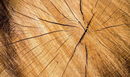 Javni razpis za ugodna posojila podjetniškim projektom in projektom na področju obdelave in predelave lesa – B/BL 2018
