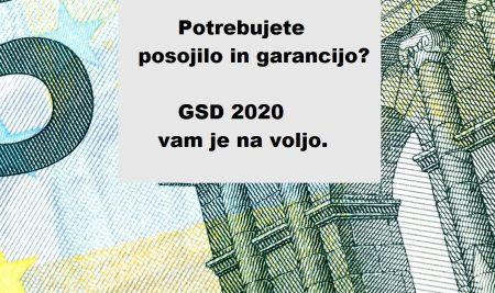 Razpis garancij in posojil Garancijske sheme za Dolenjsko (GSD) 2020