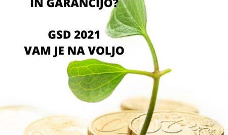 Razpis garancij in posojil Garancijske sheme za Dolenjsko (GSD) 2021